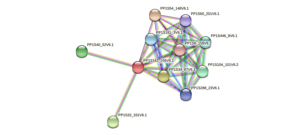 PP1S162_156V6.1 protein (Physcomitrella patens) - STRING interaction network