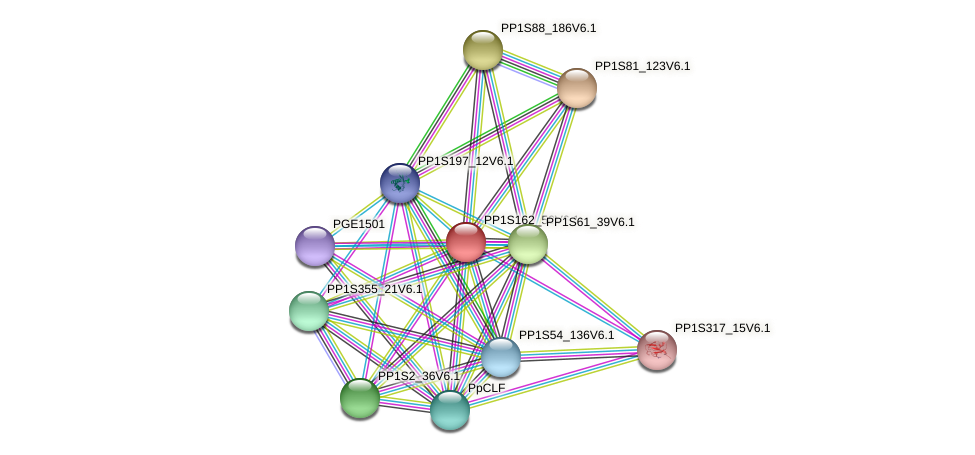 PP1S162_50V6.1 protein (Physcomitrella patens) - STRING interaction network