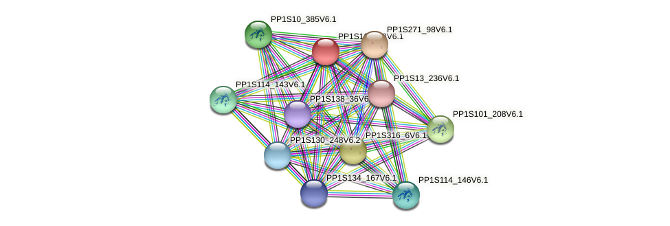 PP1S162_83V6.1 protein (Physcomitrella patens) - STRING interaction network