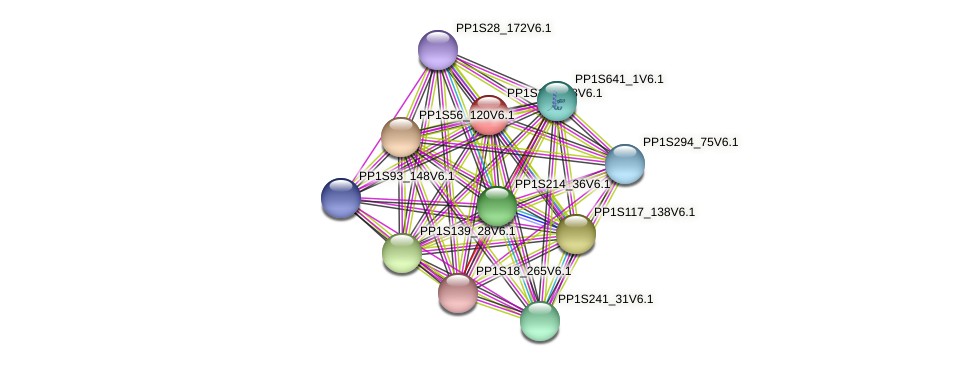 PP1S162_98V6.1 protein (Physcomitrella patens) - STRING interaction network