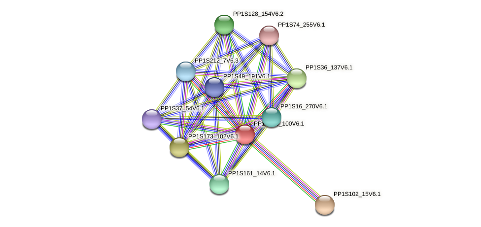 PP1S163_100V6.1 protein (Physcomitrella patens) - STRING interaction network