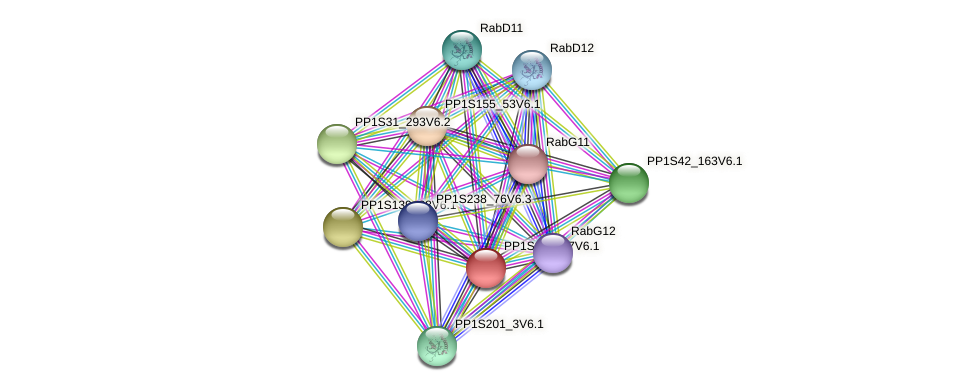 PP1S163_87V6.1 protein (Physcomitrella patens) - STRING interaction network