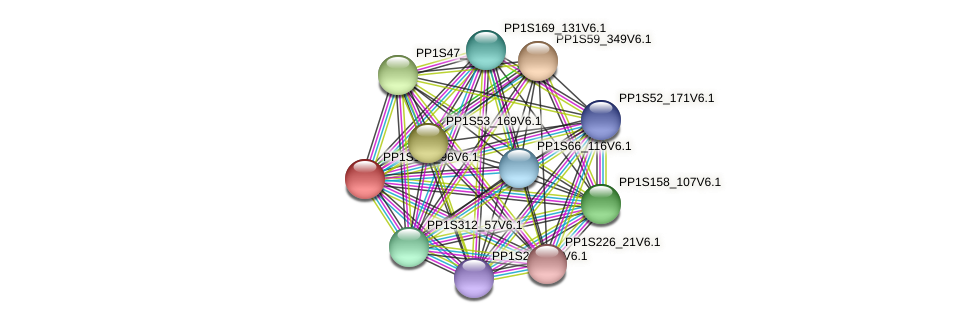 PP1S163_96V6.1 protein (Physcomitrella patens) - STRING interaction network