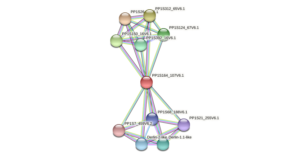 PP1S164_107V6.1 protein (Physcomitrella patens) - STRING interaction network