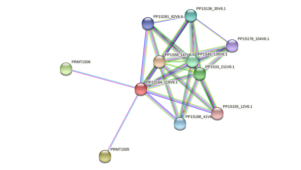 PP1S164_119V6.1 protein (Physcomitrella patens) - STRING interaction network