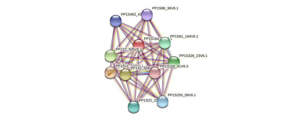 PP1S164_21V6.1 protein (Physcomitrella patens) - STRING interaction network