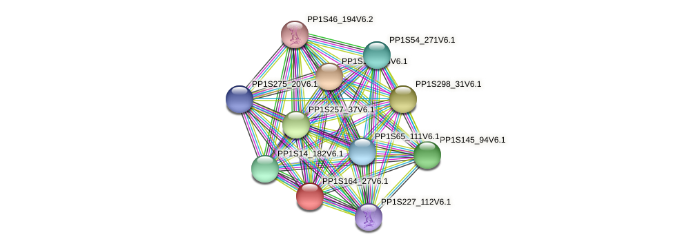 PP1S164_27V6.1 protein (Physcomitrella patens) - STRING interaction network