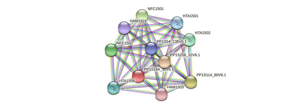 PP1S164_30V6.1 protein (Physcomitrella patens) - STRING interaction network
