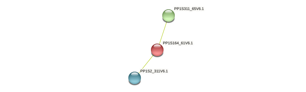 PP1S164_61V6.1 protein (Physcomitrella patens) - STRING interaction network