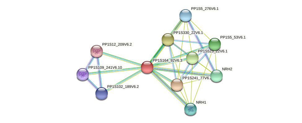PP1S164_92V6.1 protein (Physcomitrella patens) - STRING interaction network