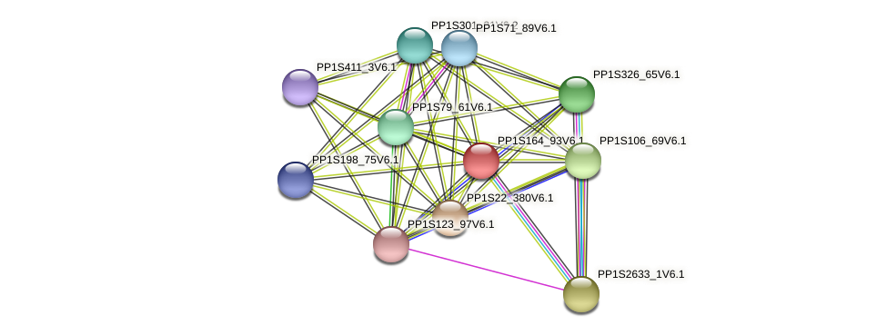 PP1S164_93V6.1 protein (Physcomitrella patens) - STRING interaction network