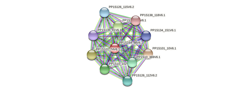 PP1S164_98V6.1 protein (Physcomitrella patens) - STRING interaction network