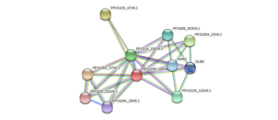PP1S165_105V6.1 protein (Physcomitrella patens) - STRING interaction network