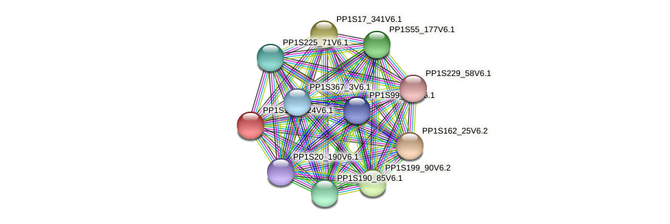 PP1S165_124V6.1 protein (Physcomitrella patens) - STRING interaction network