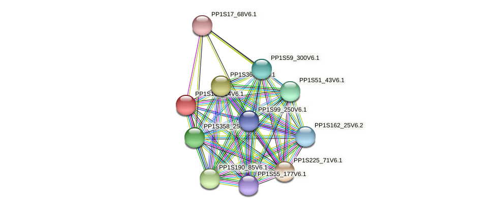 PP1S165_14V6.1 protein (Physcomitrella patens) - STRING interaction network