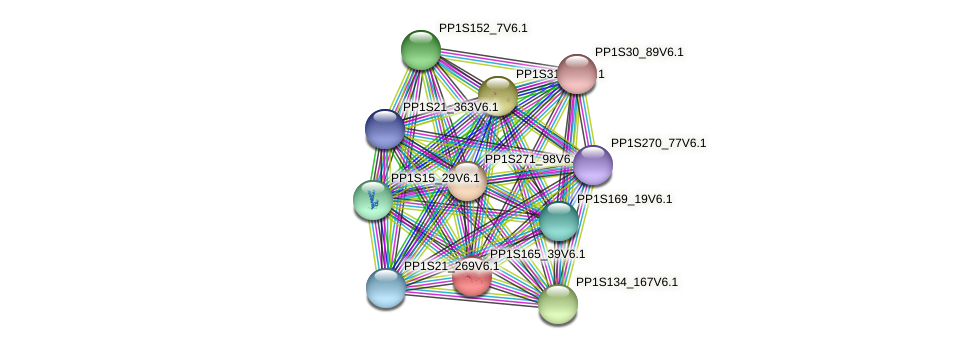 PP1S165_39V6.1 protein (Physcomitrella patens) - STRING interaction network