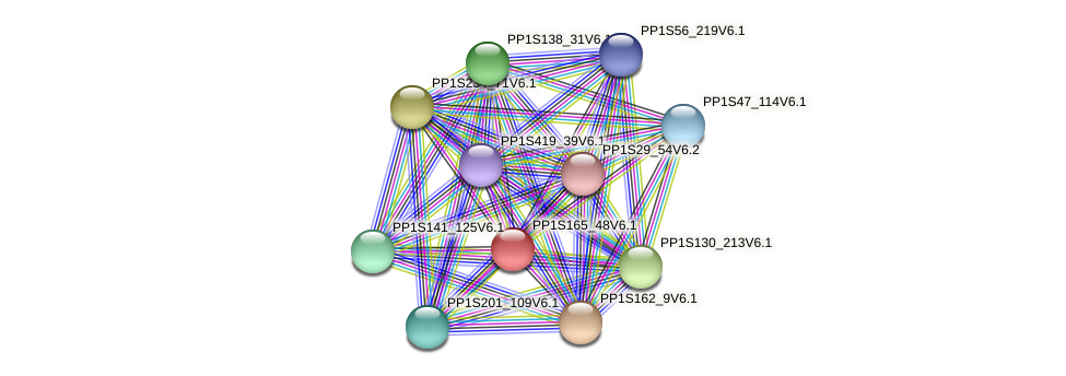 PP1S165_48V6.1 protein (Physcomitrella patens) - STRING interaction network
