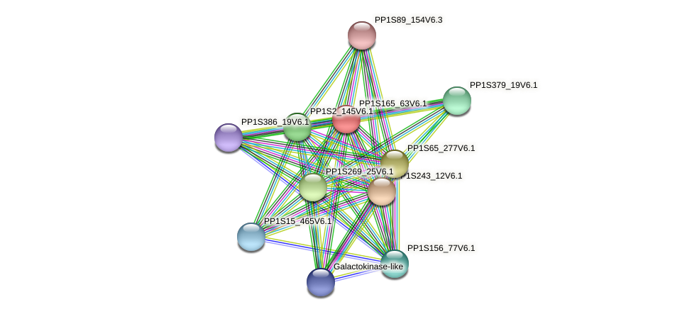 PP1S165_63V6.1 protein (Physcomitrella patens) - STRING interaction network