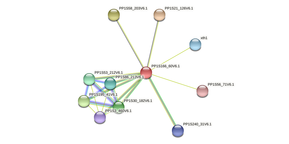 PP1S166_60V6.1 protein (Physcomitrella patens) - STRING interaction network