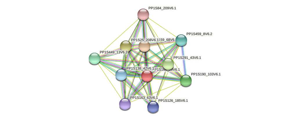 PP1S166_89V6.1 protein (Physcomitrella patens) - STRING interaction network