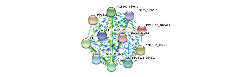 PP1S167_107V6.1 protein (Physcomitrella patens) - STRING interaction network