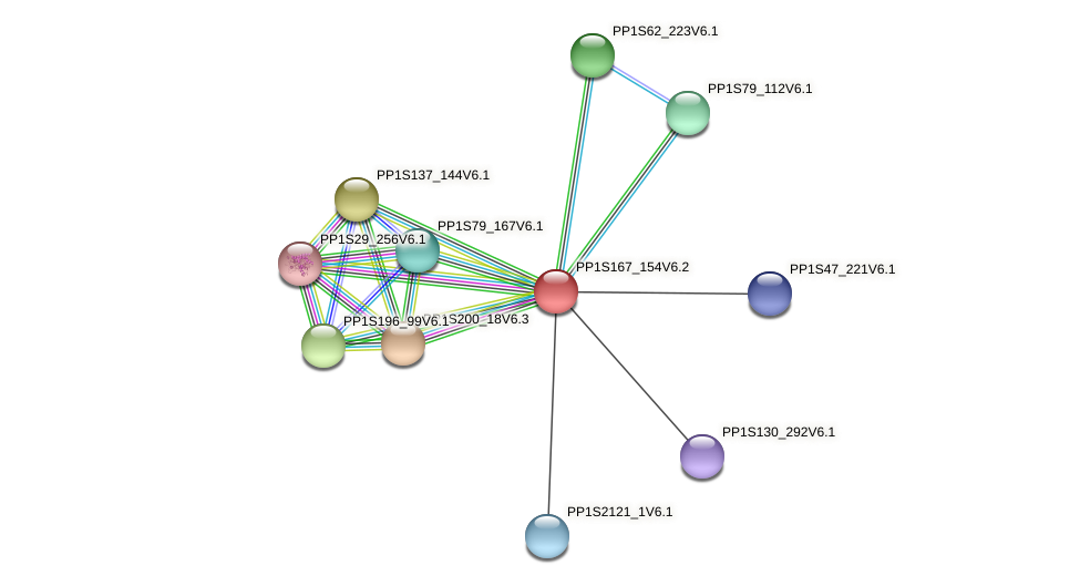 PP1S167_154V6.2 protein (Physcomitrella patens) - STRING interaction network