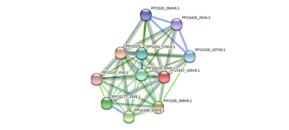 PP1S167_155V6.1 protein (Physcomitrella patens) - STRING interaction network