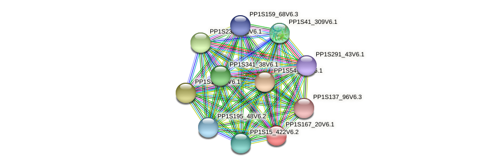 PP1S167_20V6.1 protein (Physcomitrella patens) - STRING interaction network