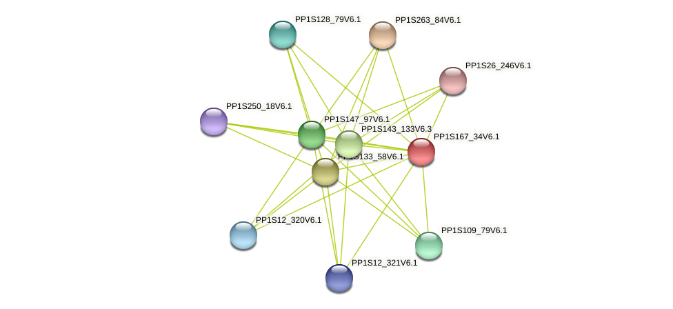 PP1S167_34V6.1 protein (Physcomitrella patens) - STRING interaction network