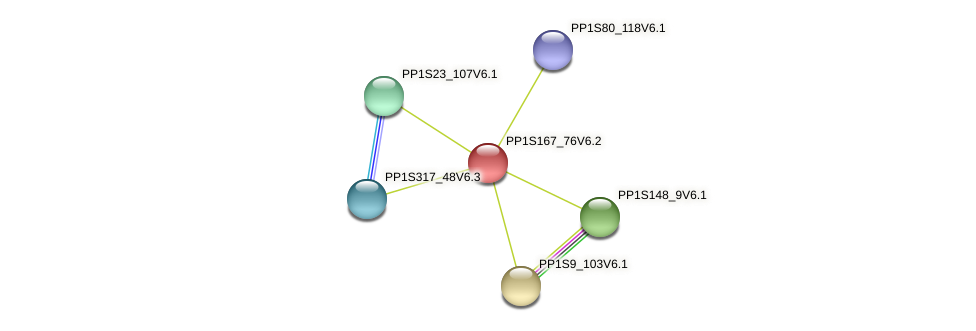 PP1S167_76V6.1 protein (Physcomitrella patens) - STRING interaction network