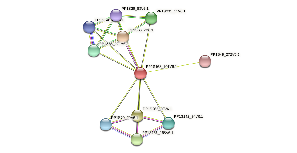 PP1S168_101V6.1 protein (Physcomitrella patens) - STRING interaction network