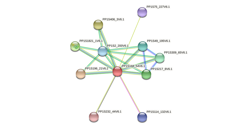 PP1S168_54V6.1 protein (Physcomitrella patens) - STRING interaction network