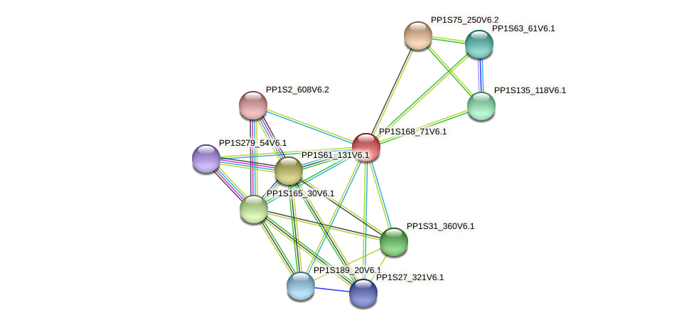 PP1S168_71V6.1 protein (Physcomitrella patens) - STRING interaction network