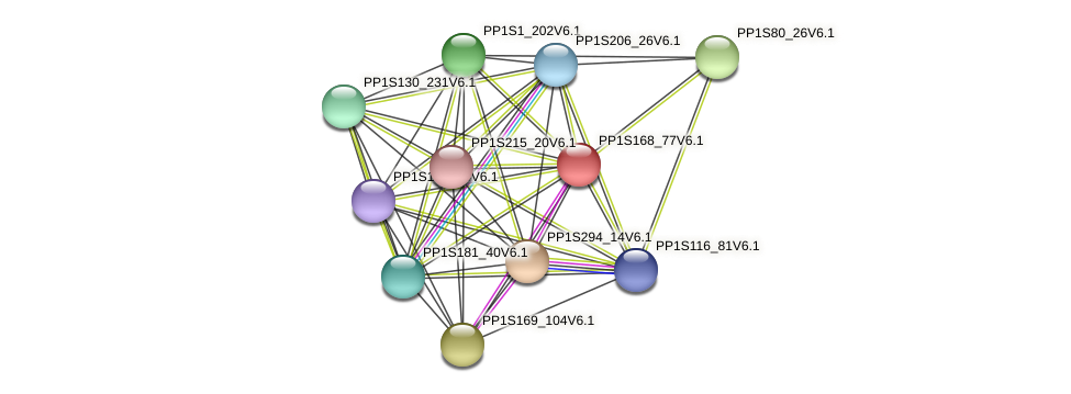 PP1S168_77V6.1 protein (Physcomitrella patens) - STRING interaction network