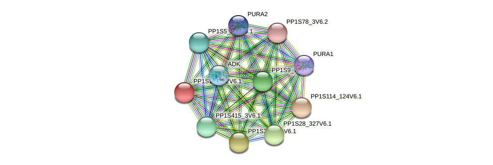 PP1S168_82V6.1 protein (Physcomitrella patens) - STRING interaction network