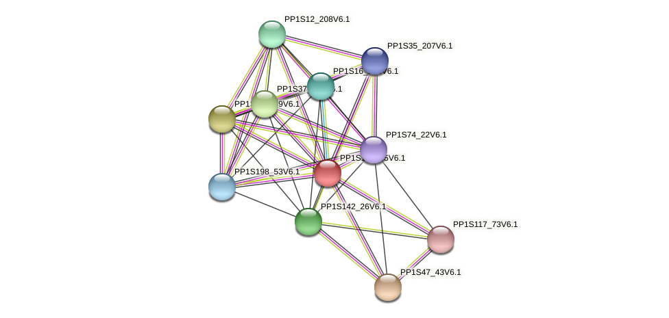 PP1S168_95V6.1 protein (Physcomitrella patens) - STRING interaction network