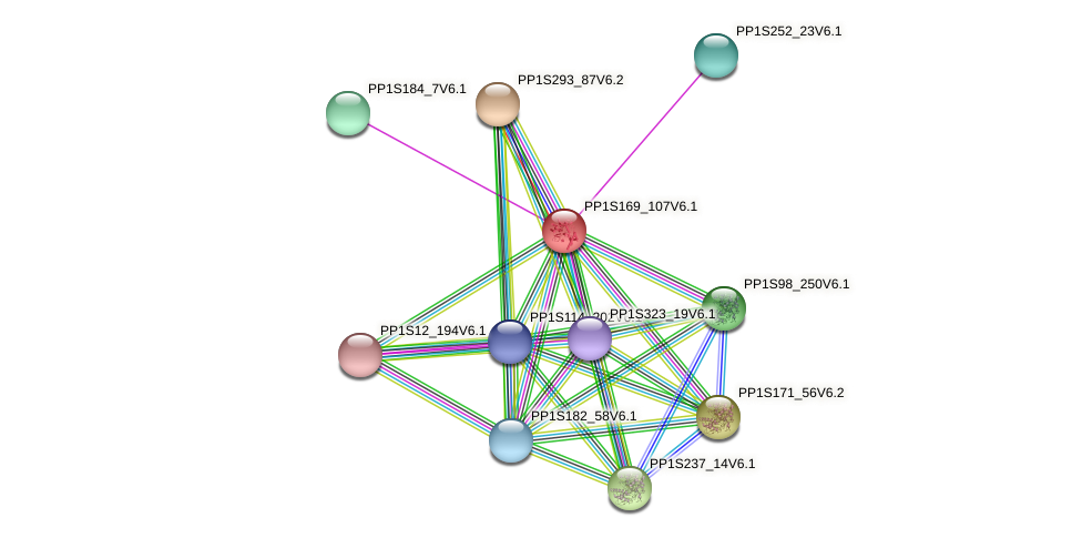PP1S169_107V6.1 protein (Physcomitrella patens) - STRING interaction network