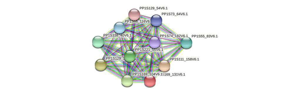 PP1S169_131V6.1 protein (Physcomitrella patens) - STRING interaction network