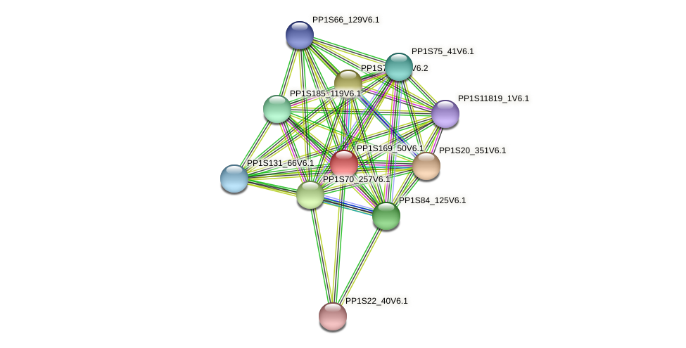 PP1S169_50V6.1 protein (Physcomitrella patens) - STRING interaction network