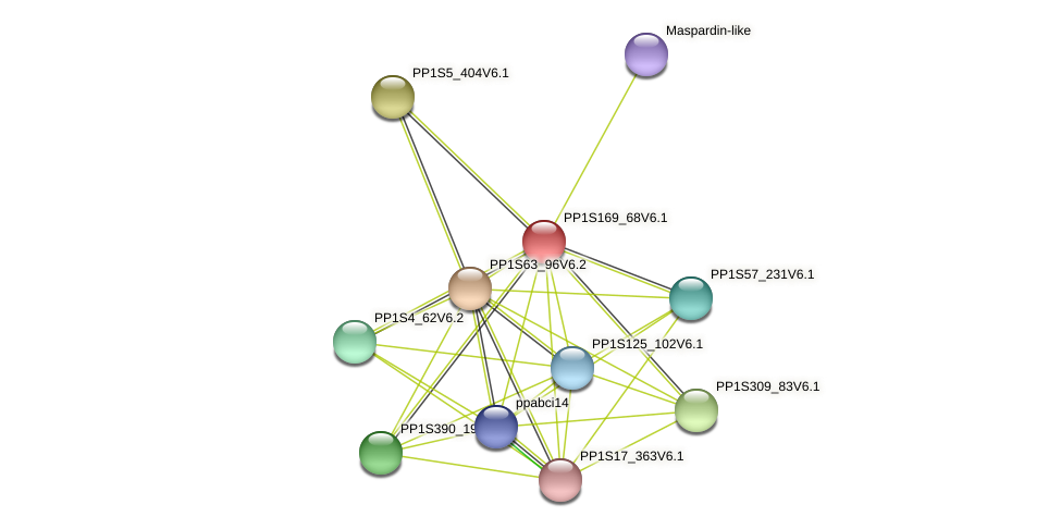 PP1S169_68V6.1 protein (Physcomitrella patens) - STRING interaction network