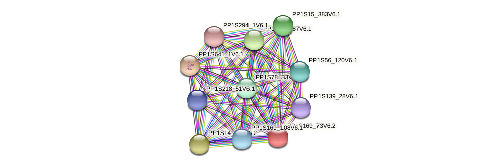 PP1S169_73V6.2 protein (Physcomitrella patens) - STRING interaction network