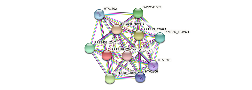 PP1S169_76V6.1 protein (Physcomitrella patens) - STRING interaction network