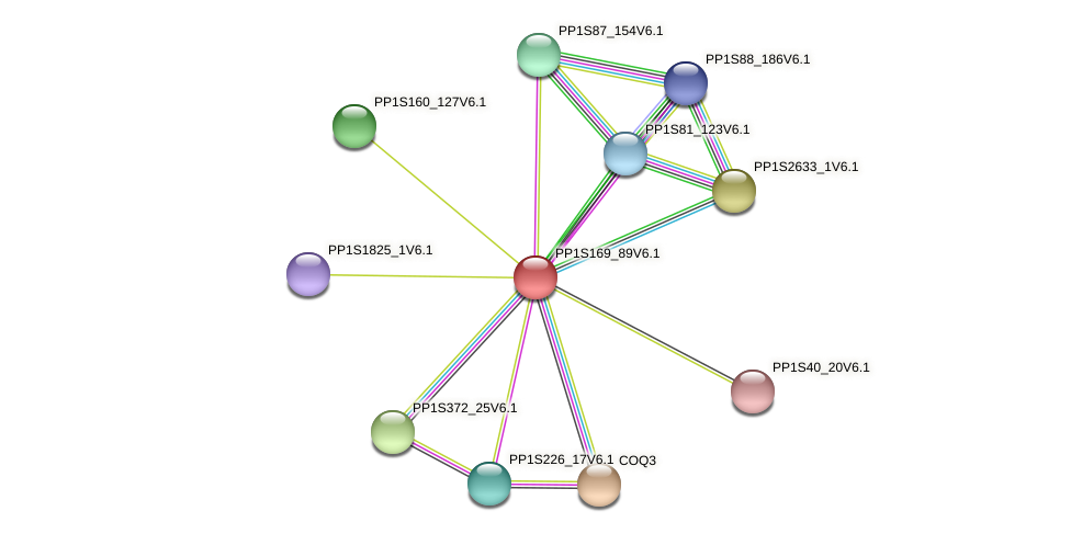 PP1S169_89V6.1 protein (Physcomitrella patens) - STRING interaction network