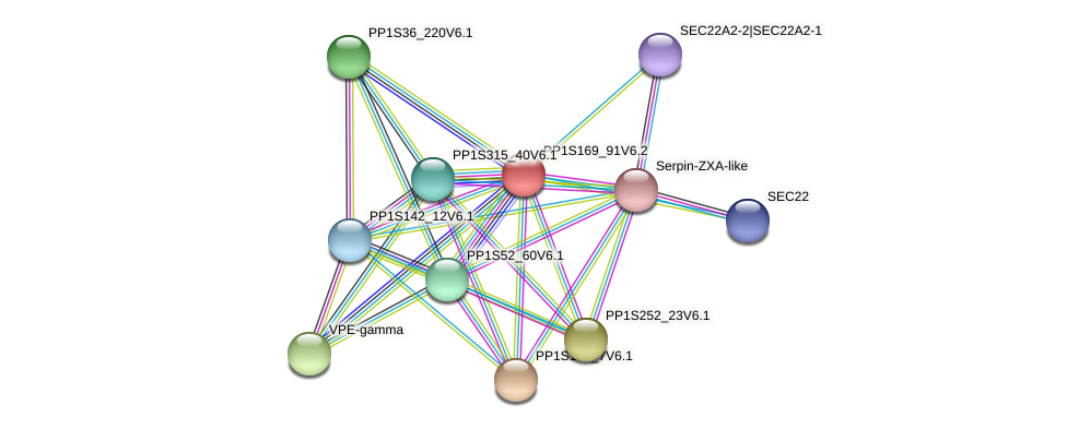 PP1S169_91V6.1 protein (Physcomitrella patens) - STRING interaction network