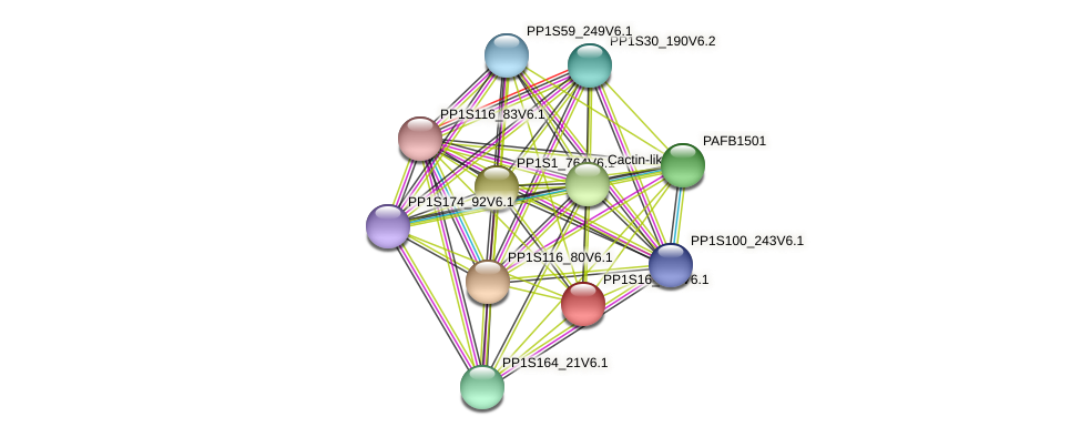 PP1S16_151V6.1 protein (Physcomitrella patens) - STRING interaction network
