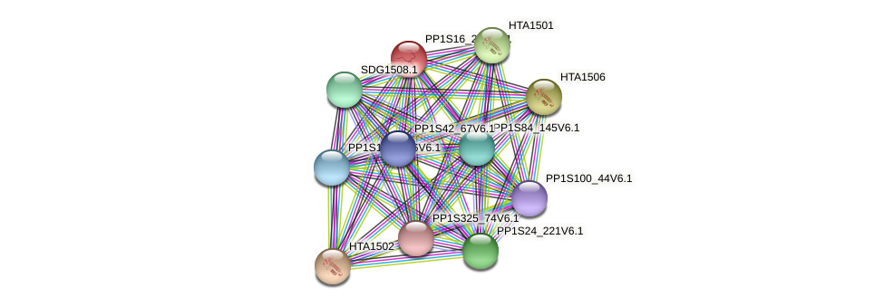 PP1S16_208V6.1 protein (Physcomitrella patens) - STRING interaction network