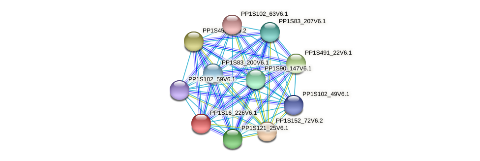 PP1S16_226V6.1 protein (Physcomitrella patens) - STRING interaction network