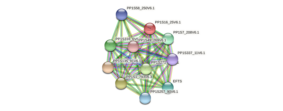 PP1S16_25V6.1 protein (Physcomitrella patens) - STRING interaction network