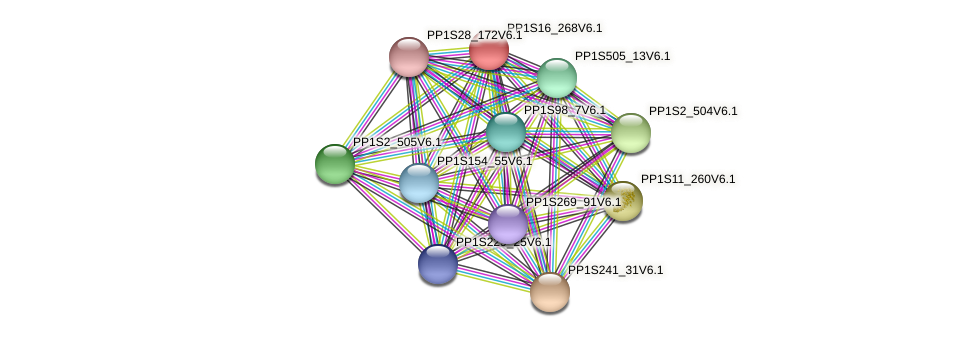 PP1S16_268V6.1 protein (Physcomitrella patens) - STRING interaction network