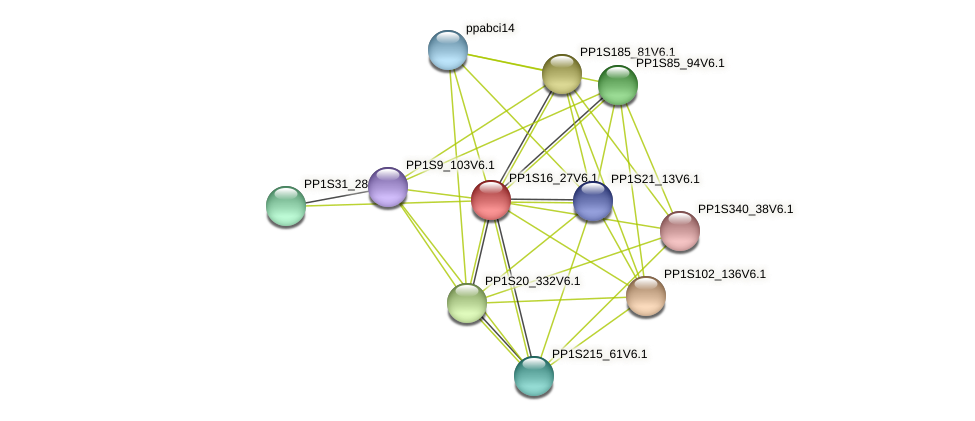 PP1S16_27V6.1 protein (Physcomitrella patens) - STRING interaction network